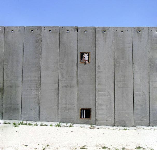 banksy-graffiti-street-art-palestine-horse